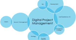 Digital project manager, chi è e cosa fa