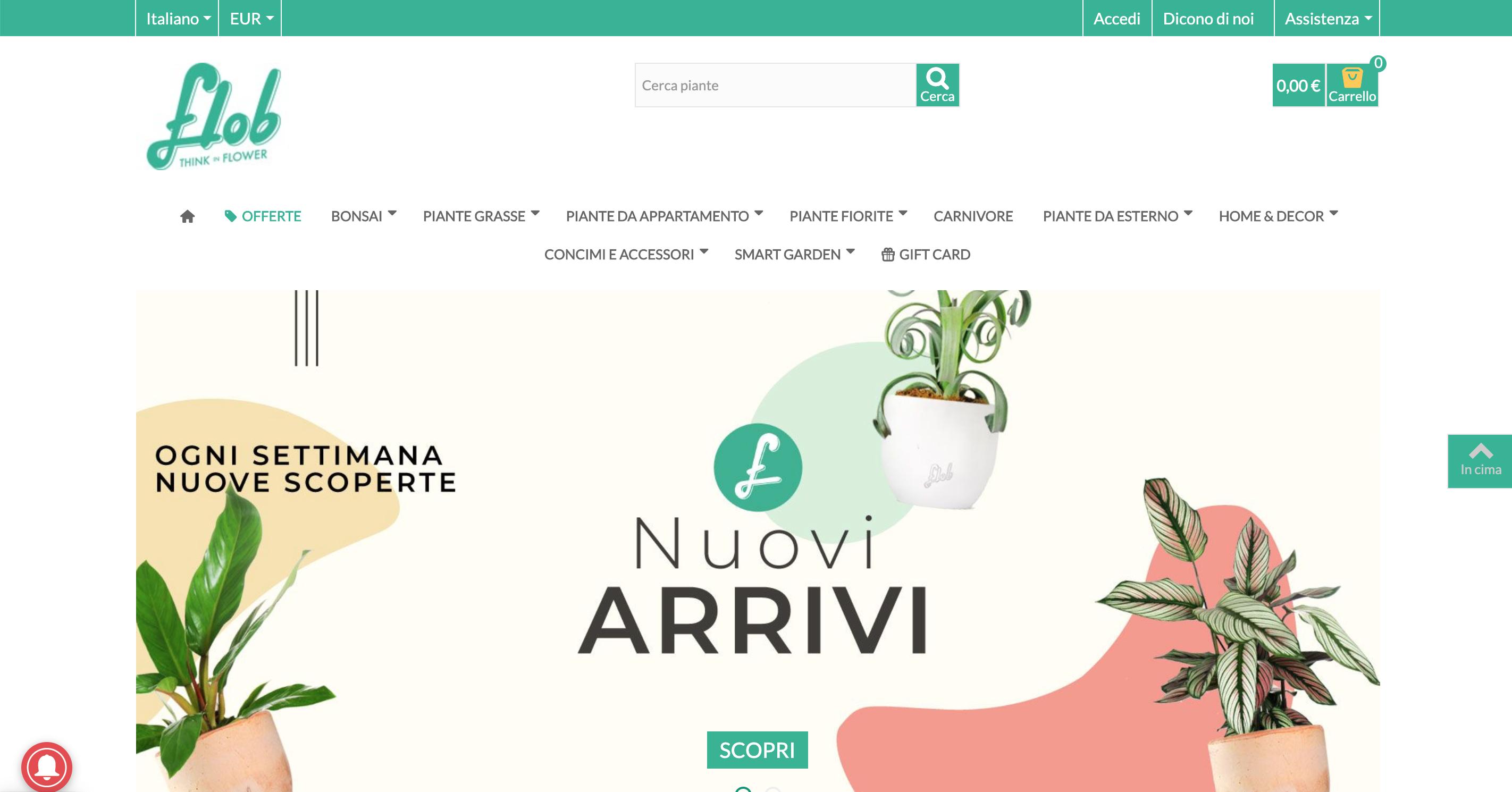 Flob flower vendita piante e fiori online