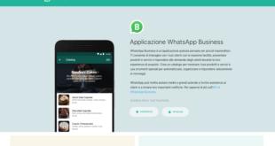 Come funziona WhatsApp Business e cosa si può fare